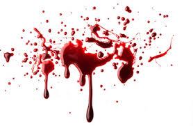 Un Pacto de Sangre